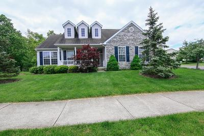 Marysville Single Family Home For Sale: 390 Emmaus Road