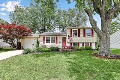 Grove City Single Family Home For Sale: 2674 Brunswick Drive