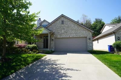 Westerville Single Family Home For Sale: 5721 Forest Grove Avenue