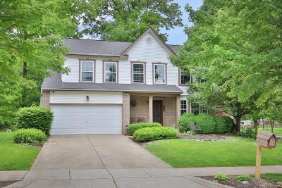 Delaware Single Family Home For Sale: 579 Ablemarle Circle