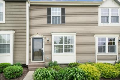 Hilliard Condo For Sale: 4993 Singleton Drive