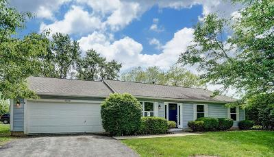 Columbus Single Family Home For Sale: 1520 Idlewild Drive