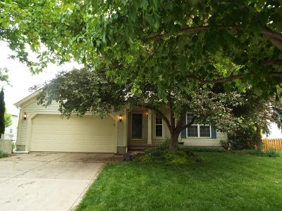 Hilliard Single Family Home For Sale: 5540 Whispering Oak Boulevard