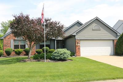 Reynoldsburg Single Family Home For Sale: 8742 Canada Court