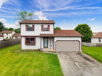 Reynoldsburg Single Family Home For Sale: 363 Trailblazer Lane