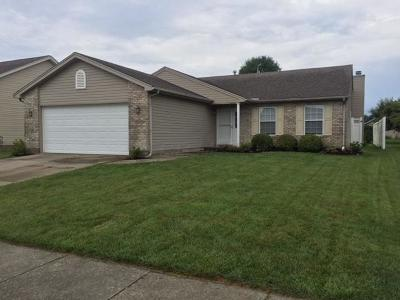 Clinton County Single Family Home For Sale: 562 Cheyenne Court