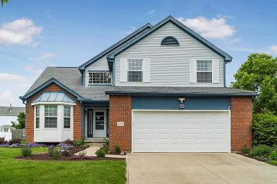 Grove City Single Family Home For Sale: 1270 Wild Horse Drive