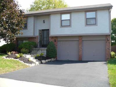 Columbus Single Family Home For Sale: 3467 Frenchpark Drive