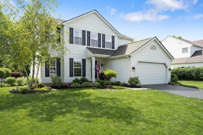 Hilliard OH Single Family Home For Sale: $314,900