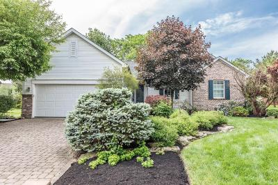 Franklin County, Delaware County, Fairfield County, Hocking County, Licking County, Madison County, Morrow County, Perry County, Pickaway County, Union County Single Family Home For Sale: 173 Dogwood Drive