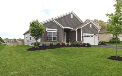 Franklin County, Delaware County, Fairfield County, Hocking County, Licking County, Madison County, Morrow County, Perry County, Pickaway County, Union County Single Family Home For Sale: 599 Buena Park Drive