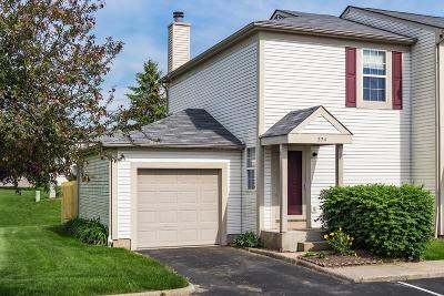Blacklick Single Family Home For Sale: 224 Macandrews Way #60A