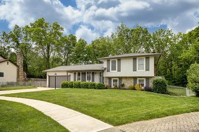 Franklin County Single Family Home For Sale: 1585 Carrigallen Avenue