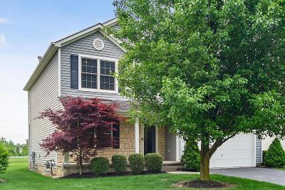 Westerville Single Family Home For Sale: 7216 Laver Lane