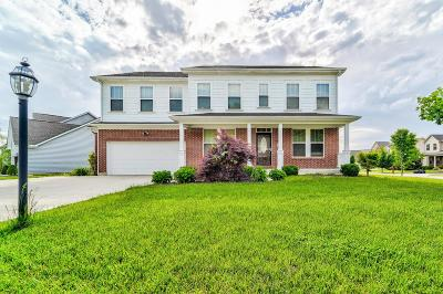 Pickerington Single Family Home For Sale: 317 Blue Jacket Circle