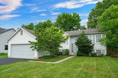 Franklin County Single Family Home For Sale: 572 Gahanna Highlands Drive