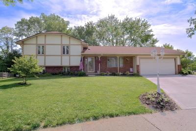 Canal Winchester Single Family Home For Sale: 18 Walnut View Court S