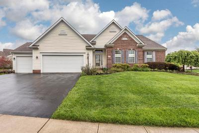 Columbus Single Family Home For Sale: 1183 Chadbyrne Drive