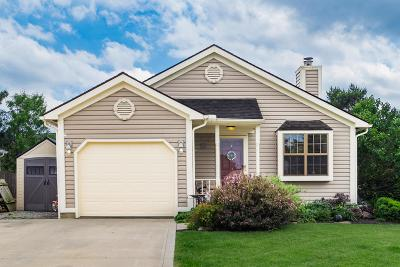 Worthington Single Family Home For Sale: 1063 Pacific Court