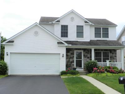 Dublin Single Family Home For Sale: 5399 Redwater Drive