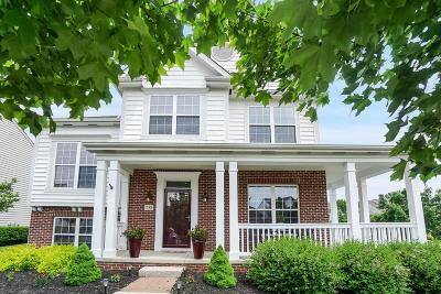 Westerville Single Family Home For Sale: 738 Olde Mill Drive