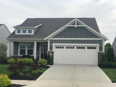 Hilliard Single Family Home For Sale: 3740 Sanctuary Loop