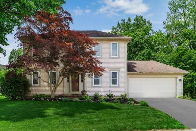 Powell Single Family Home For Sale: 2368 Chetfield Place