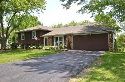 Union County Single Family Home For Sale: 13918 Watkins Road