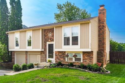 Hilliard Single Family Home For Sale: 5737 Angie Drive