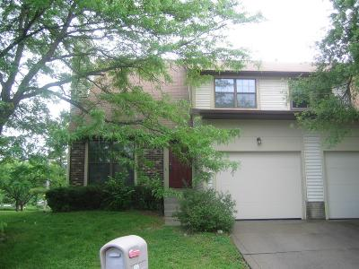 Westerville Single Family Home For Sale: 806 Applewood Lane