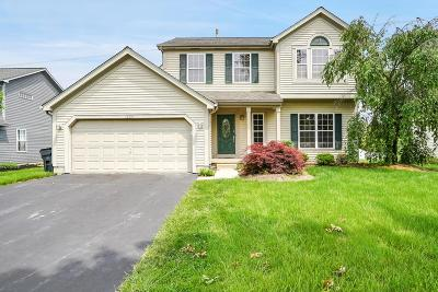 Grove City Single Family Home For Sale: 1224 Great Hunter Drive