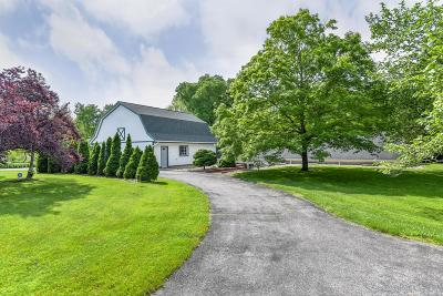 Delaware Single Family Home For Sale: 421 Willey Road