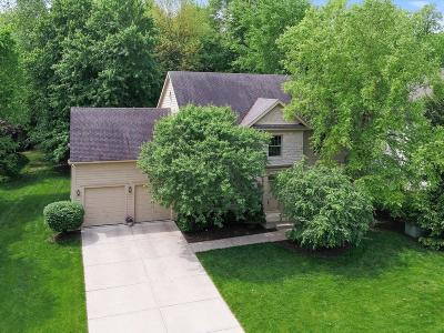 Powell Single Family Home For Sale: 369 Rosewood Court