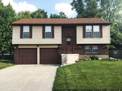 Grove City Single Family Home For Sale: 1913 Westbranch Road