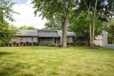Blacklick Single Family Home For Sale: 1600 Reynoldsburg - New Albany Road