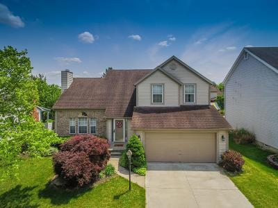 Hilliard Single Family Home For Sale: 3751 Stonesthrow Lane
