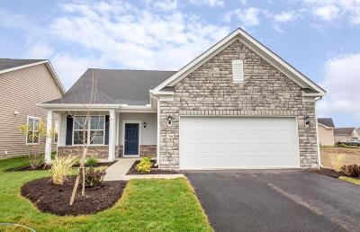 Delaware Single Family Home For Sale: 206 Stone Quarry Drive