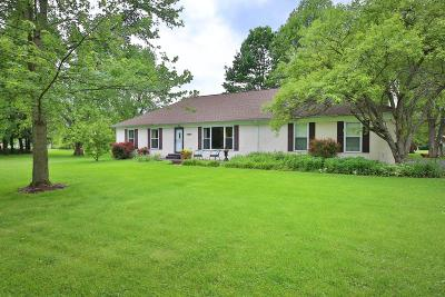 Delaware Single Family Home For Sale: 4424 S Section Line Road