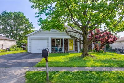 Powell Single Family Home For Sale: 8632 Seabright Drive