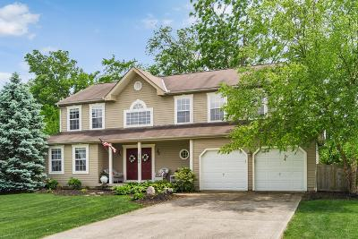 Delaware Single Family Home For Sale: 2568 Lackey Meadows Drive