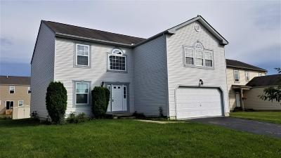 Groveport OH Single Family Home For Sale: $249,900