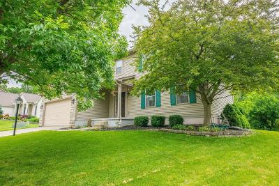 Pickerington Single Family Home For Sale: 910 Dunvegan Circle