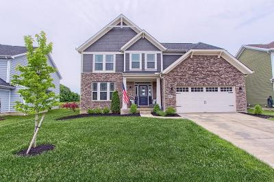 Hilliard Single Family Home For Sale: 3477 Woodland Drive