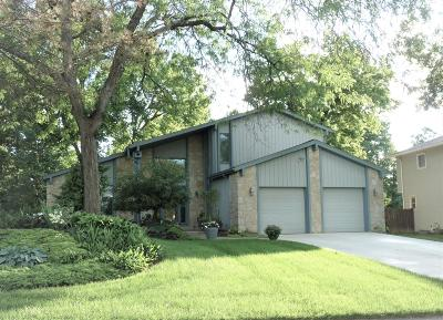 Westerville Single Family Home For Sale: 207 Shagbark Drive