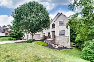 Westerville Single Family Home For Sale: 6077 Highland Hills Drive