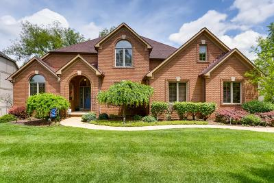 Westerville Single Family Home For Sale: 648 Lookout Ridge Drive