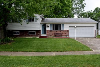 Columbus Single Family Home For Sale: 1325 Helmsdale Drive