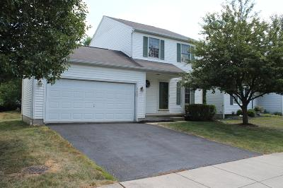 Lewis Center Single Family Home For Sale: 8620 Olenbrook Drive