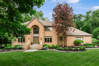 Granville Single Family Home For Sale: 153 Glyn Tawel Drive