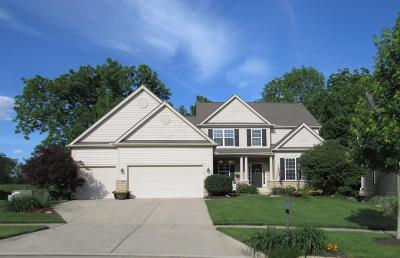 Powell Single Family Home For Sale: 7881 Bridge Crossing Court